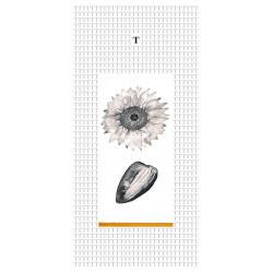Kunstkarte von Marie Drea - Sonnenblume